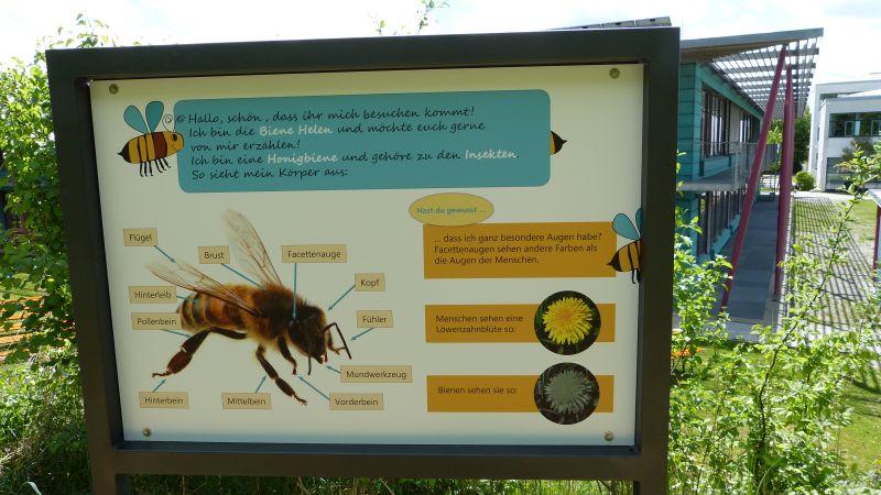 Bienenlehrpfad Dinkelscherben